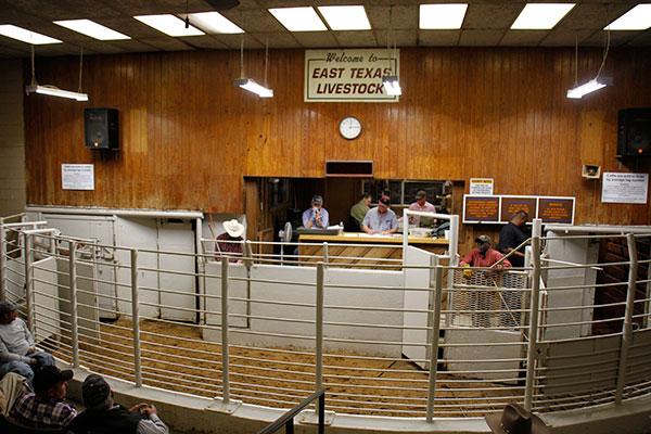 Home - East Texas Livestock